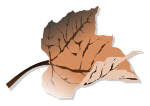brown_leaf