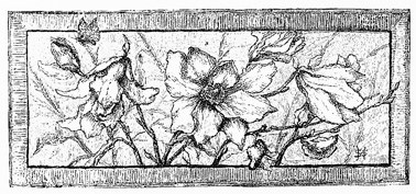 flower-borders-16