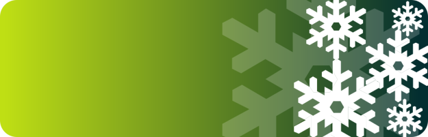 snowflake_banner_green